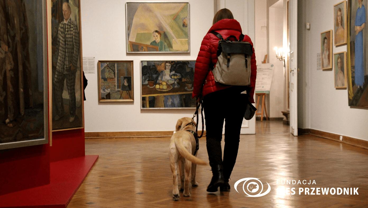 Sala muzealna w Królikarni. Środkiem przechodzi młoda kobieta z psem uczącym się na psa przewodnika